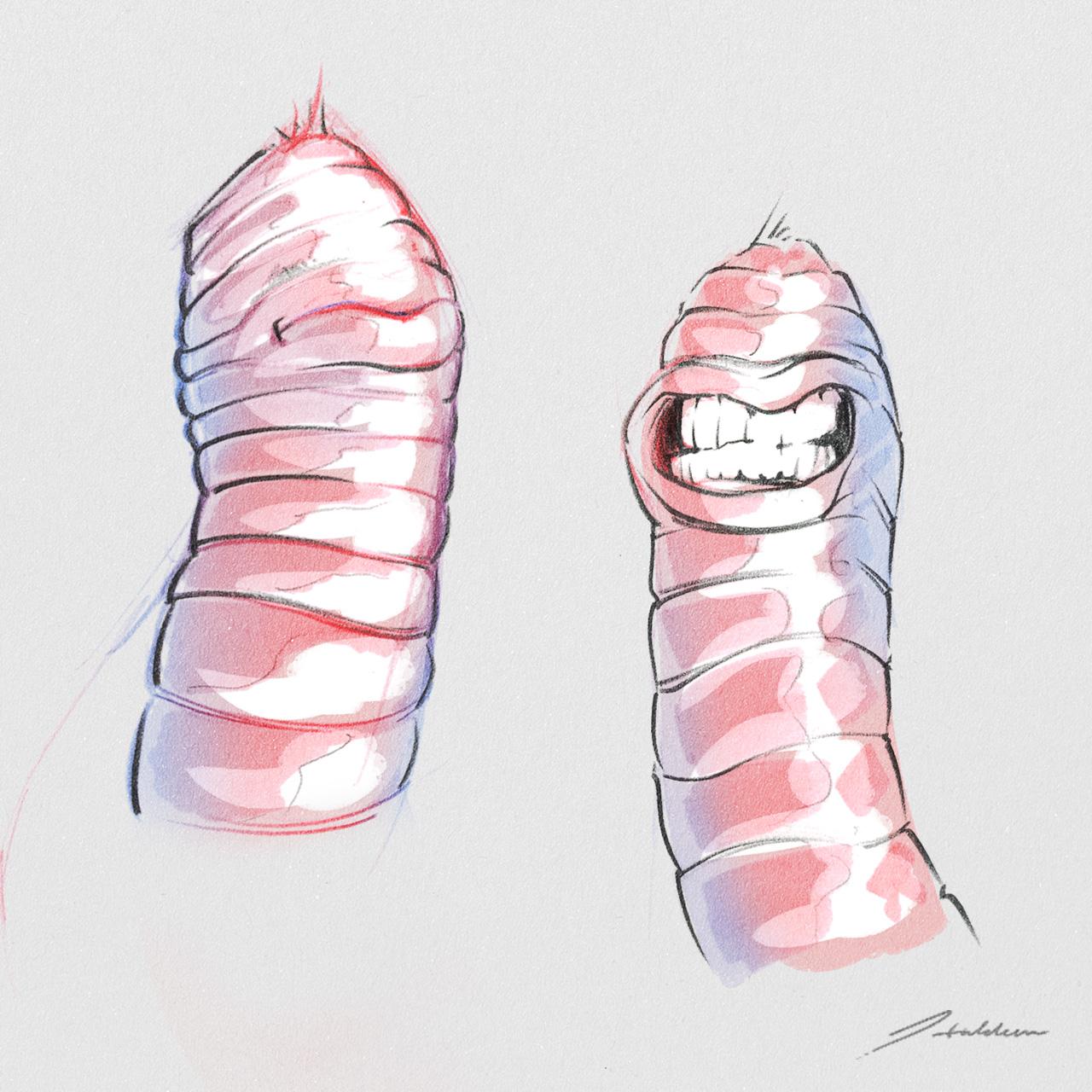 worm02.jpg