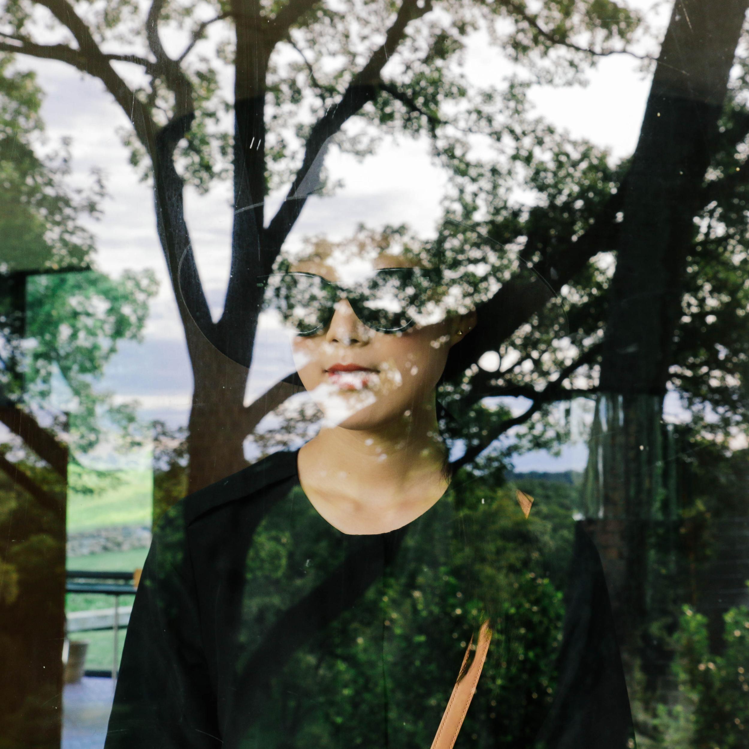 glasshouse-reflection