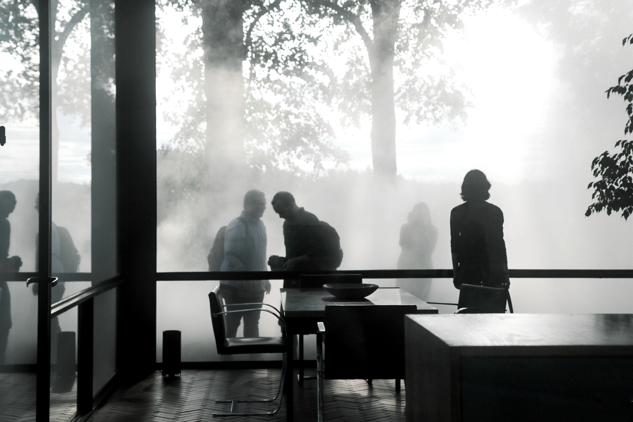glasshouse-fog