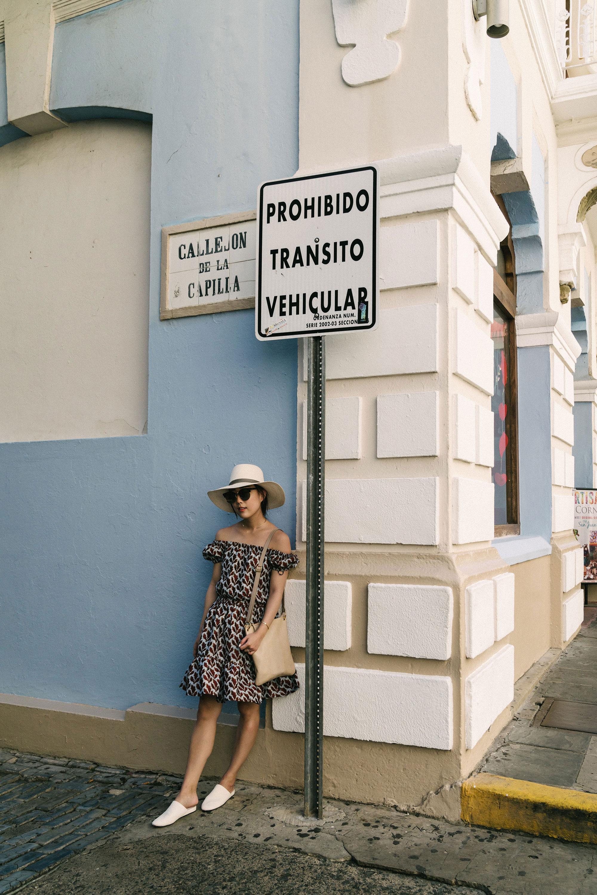 Philosophy di Lorenzo Serafini Dress ,  Vince Shoes ,  A.L.C. Bag ,  Janessa Leone Hat ,  Wwake Necklace
