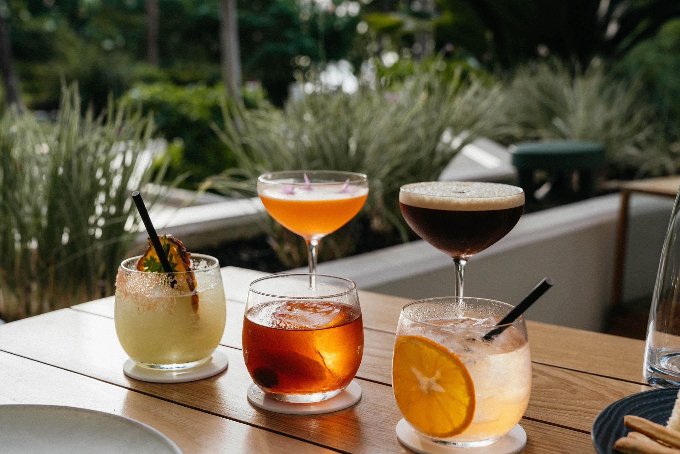 Amazing cocktail tasting