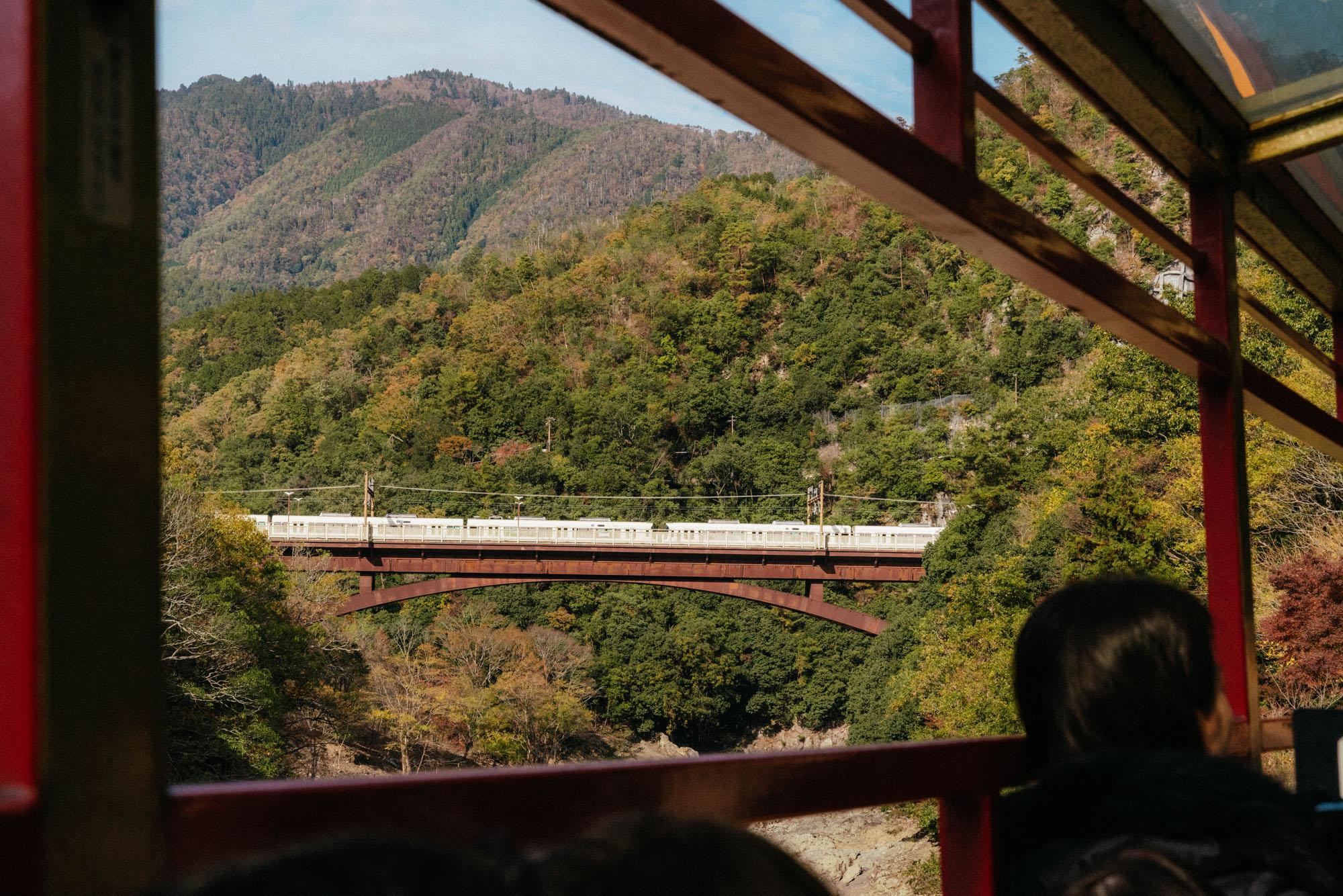 A ride on the Sagano Romantic Train to view the autumn foliage