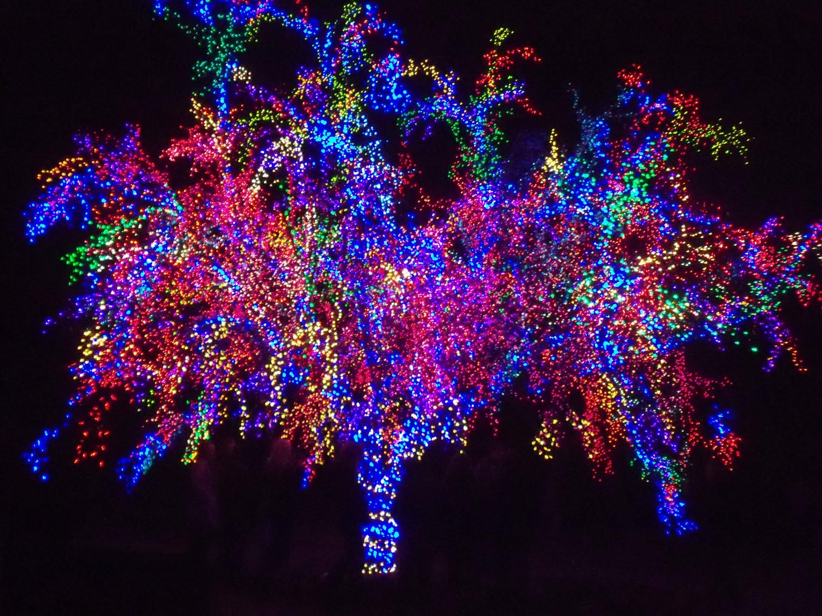 Richmond Tacky Light Tour, Charlottesville Tacky Light Tour.jpg