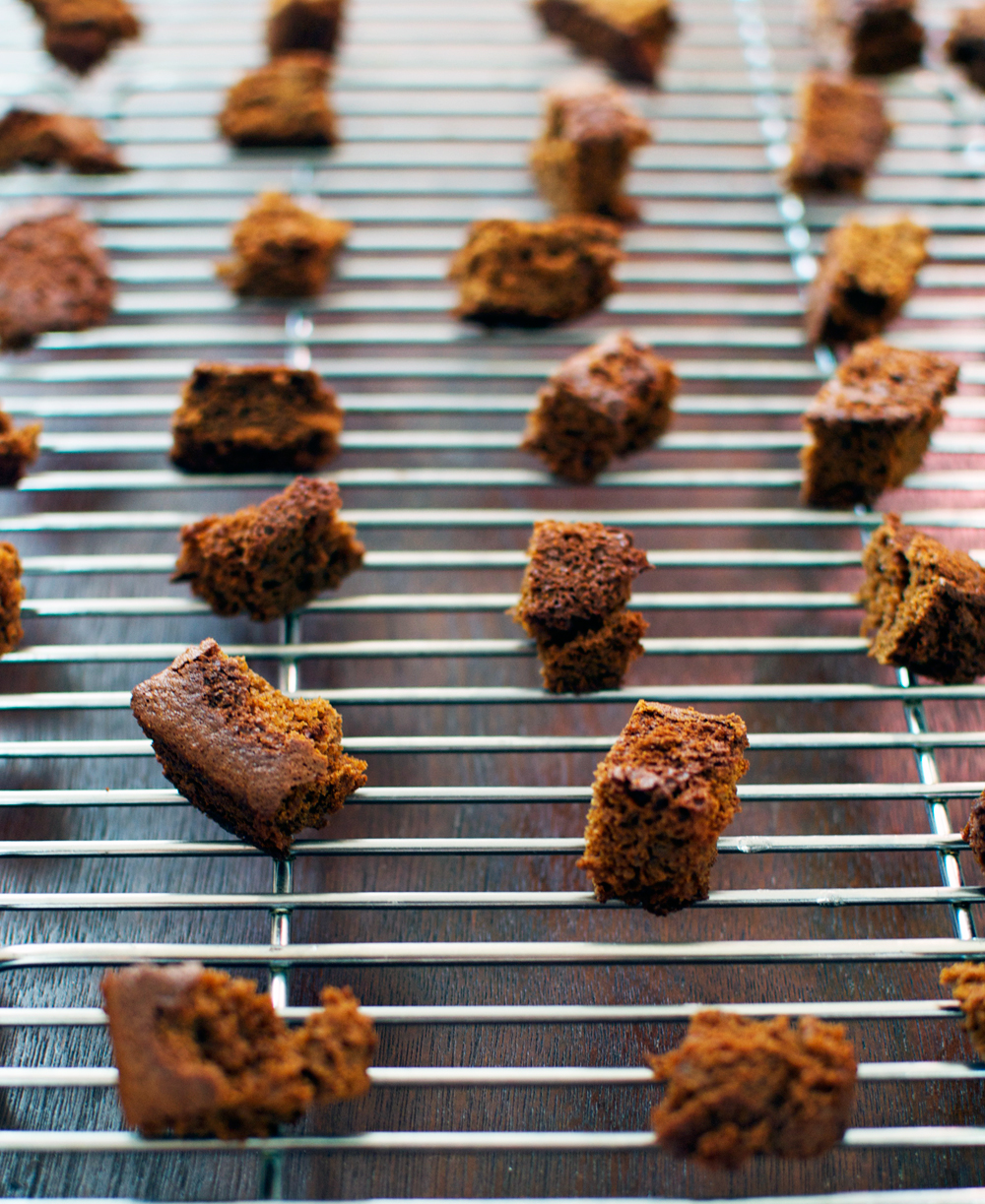 spicy-gingerbread-croutons