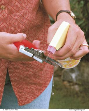 Disinfect pruning shears with alcohol before moving from one tree to the next.