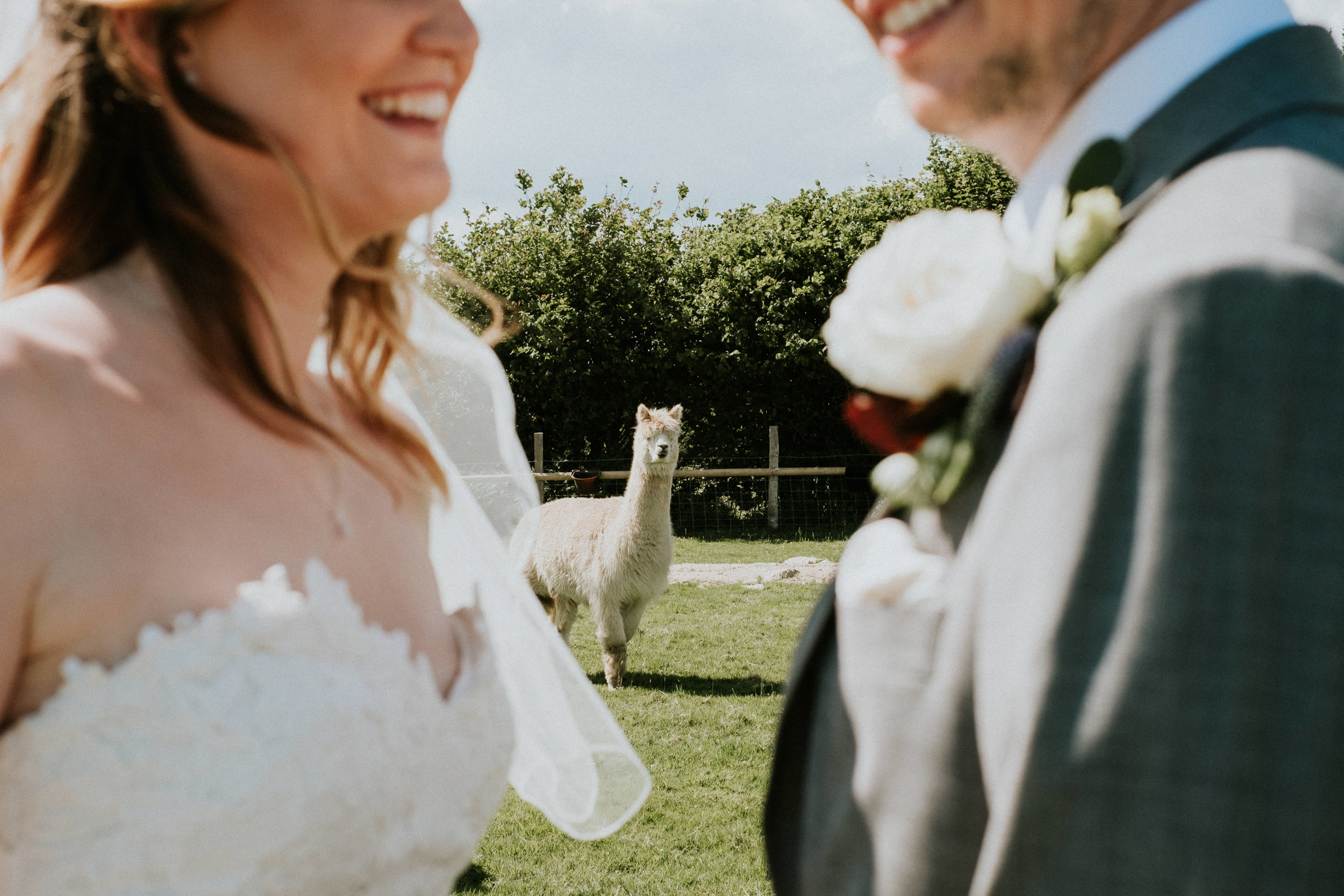 65 Sussex alternative wedding photography joanna nicole 1.jpg