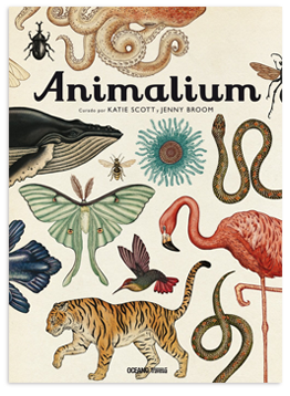 animalium-book.png