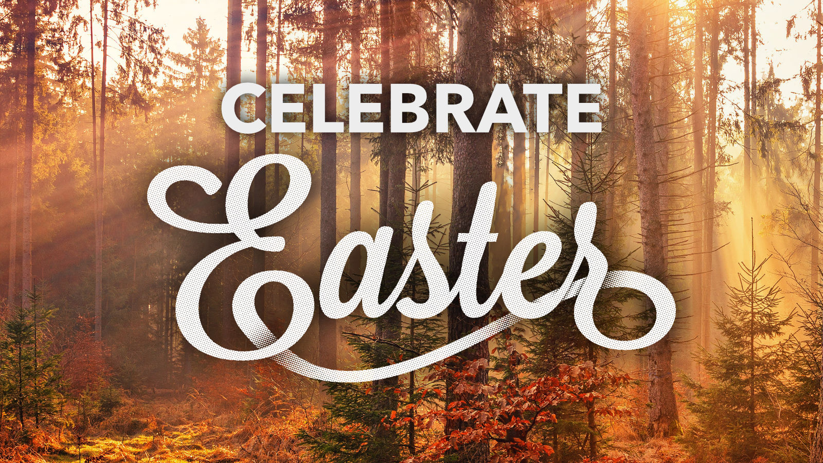 Celebrate Easter graphic.jpg