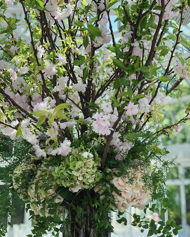 And, another flowering branch season came and went 🌸 🌿#springflowers #beautifulthings #weddingseason #blushdesignsNY