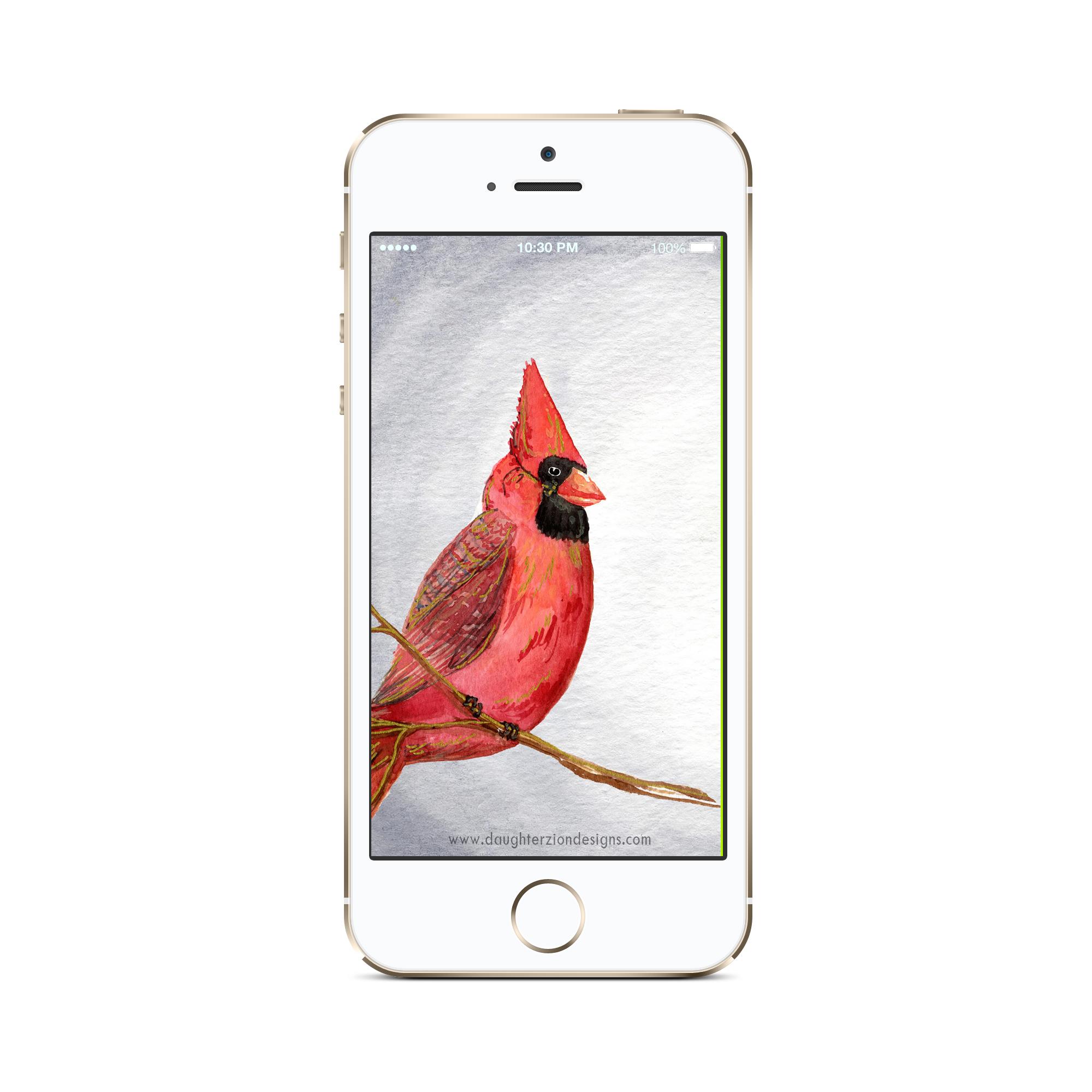 january phone mockup