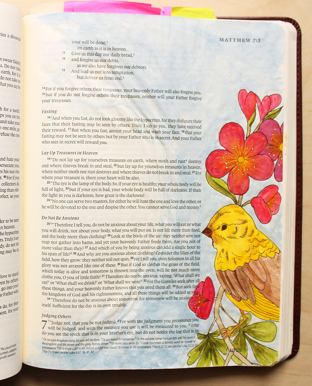 Look at the Birds -  Illustrated Faith by Daughter Zion Designs