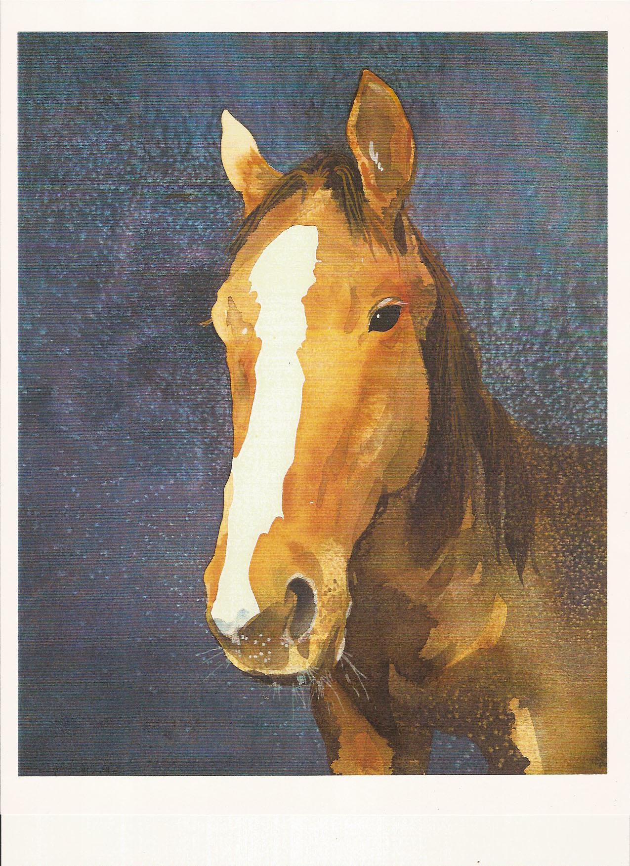 horse portrait-thoroughbred-5156688694.jpg