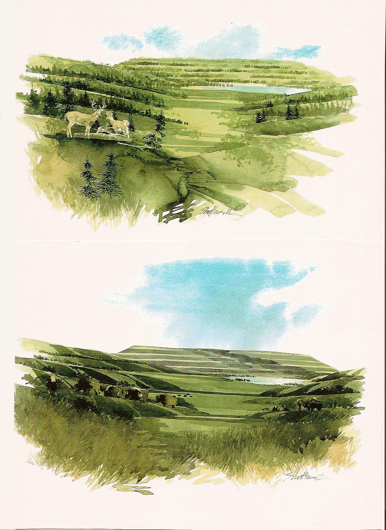 reclaimed landscape-4352650426.jpg