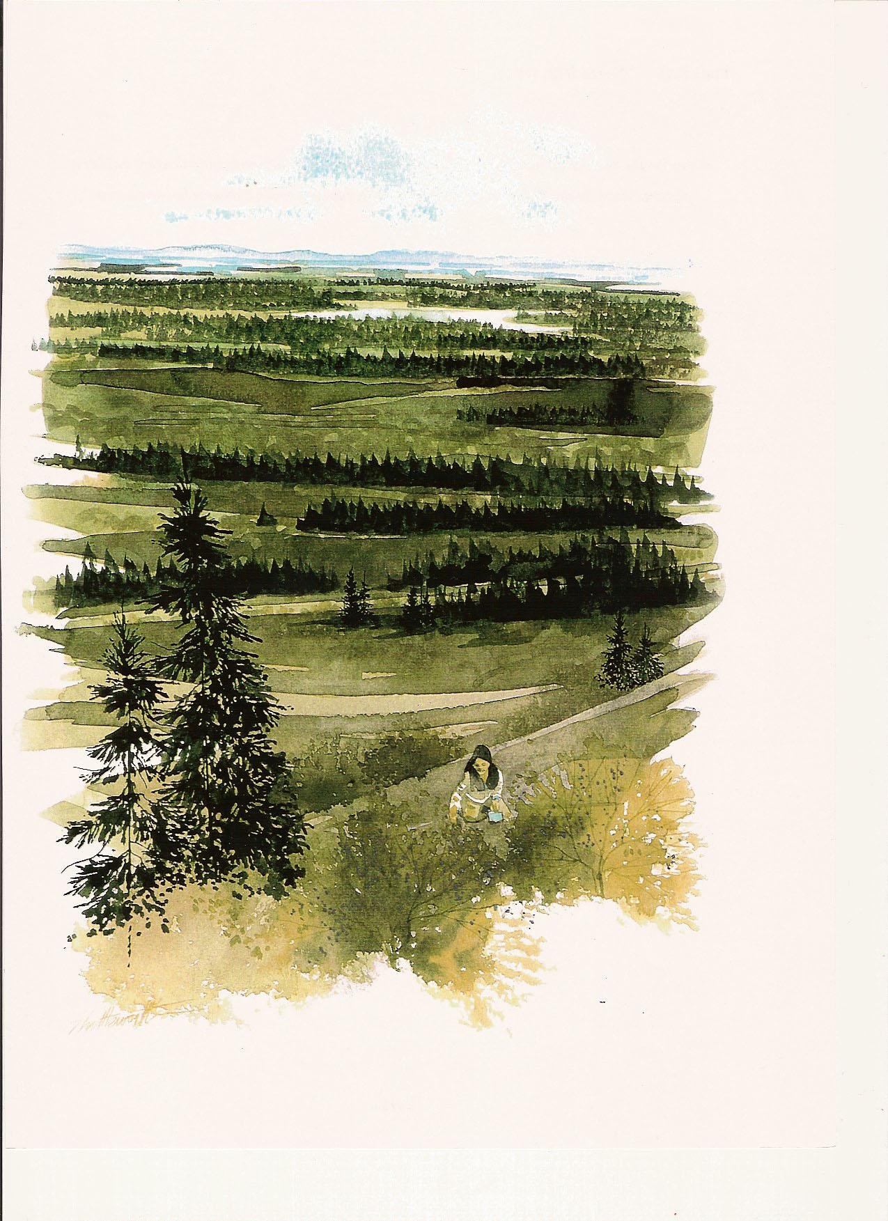 reclaimed landscape-4352651274.jpg