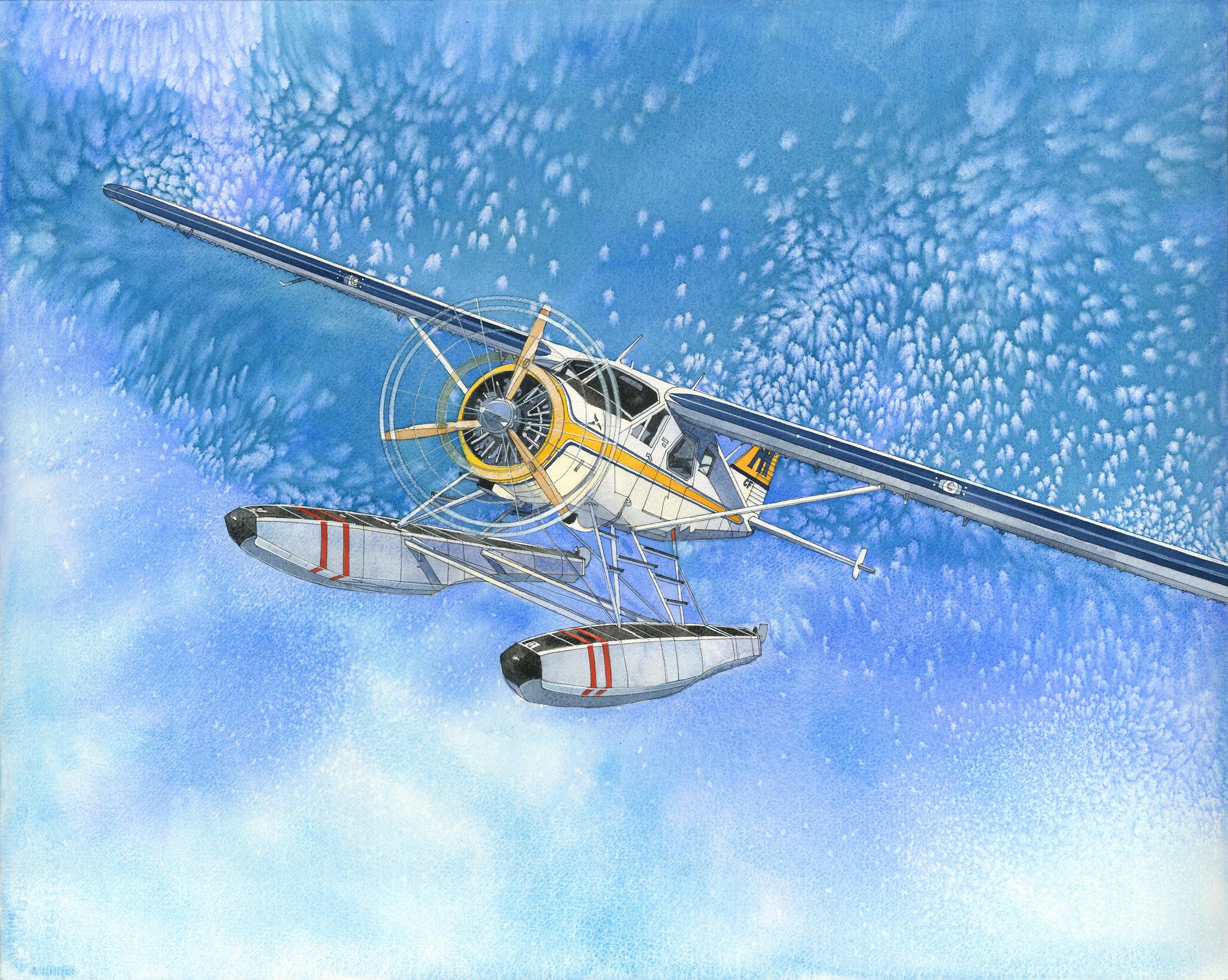 Harbour Air Plane