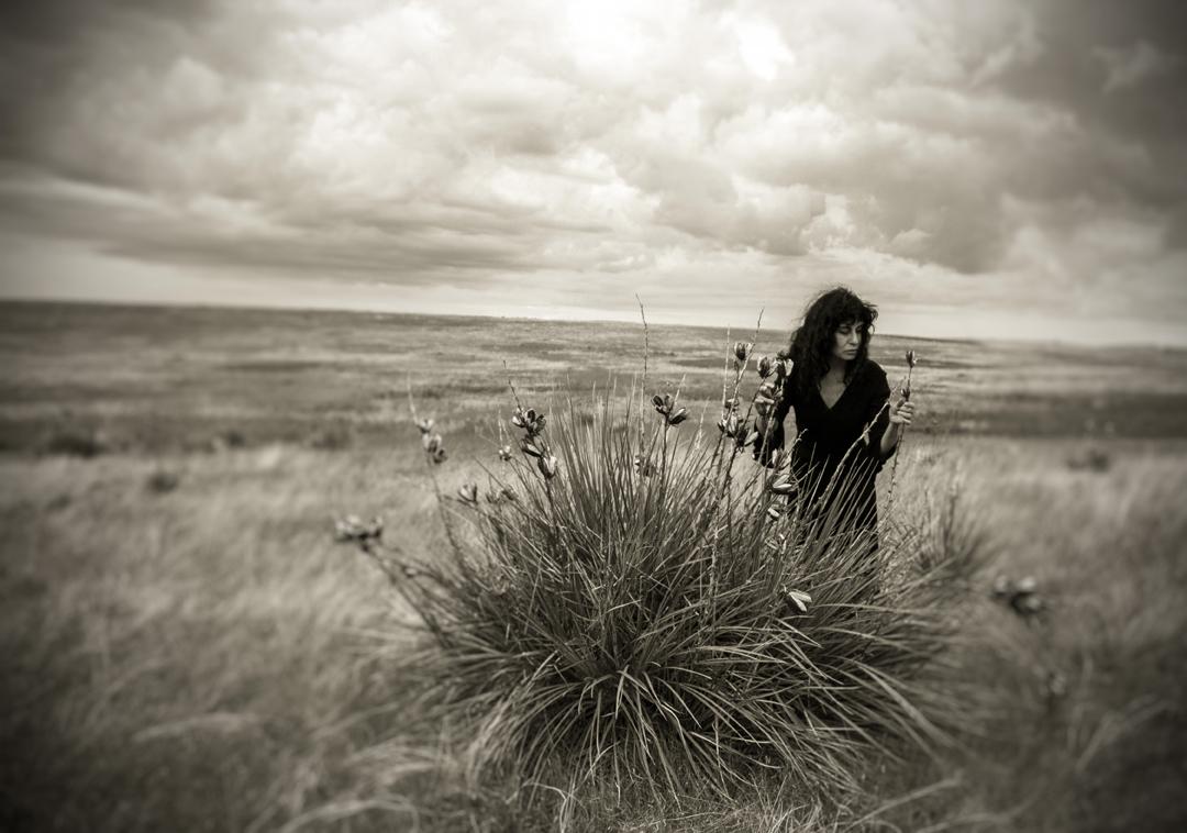 marlene-yucca.jpg
