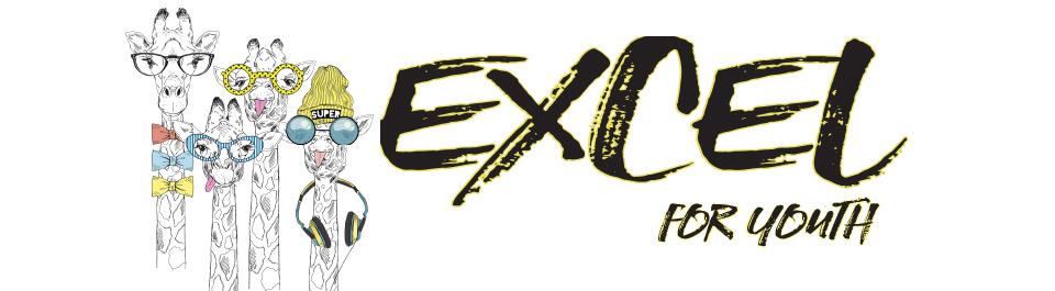 excelbanner19.jpg
