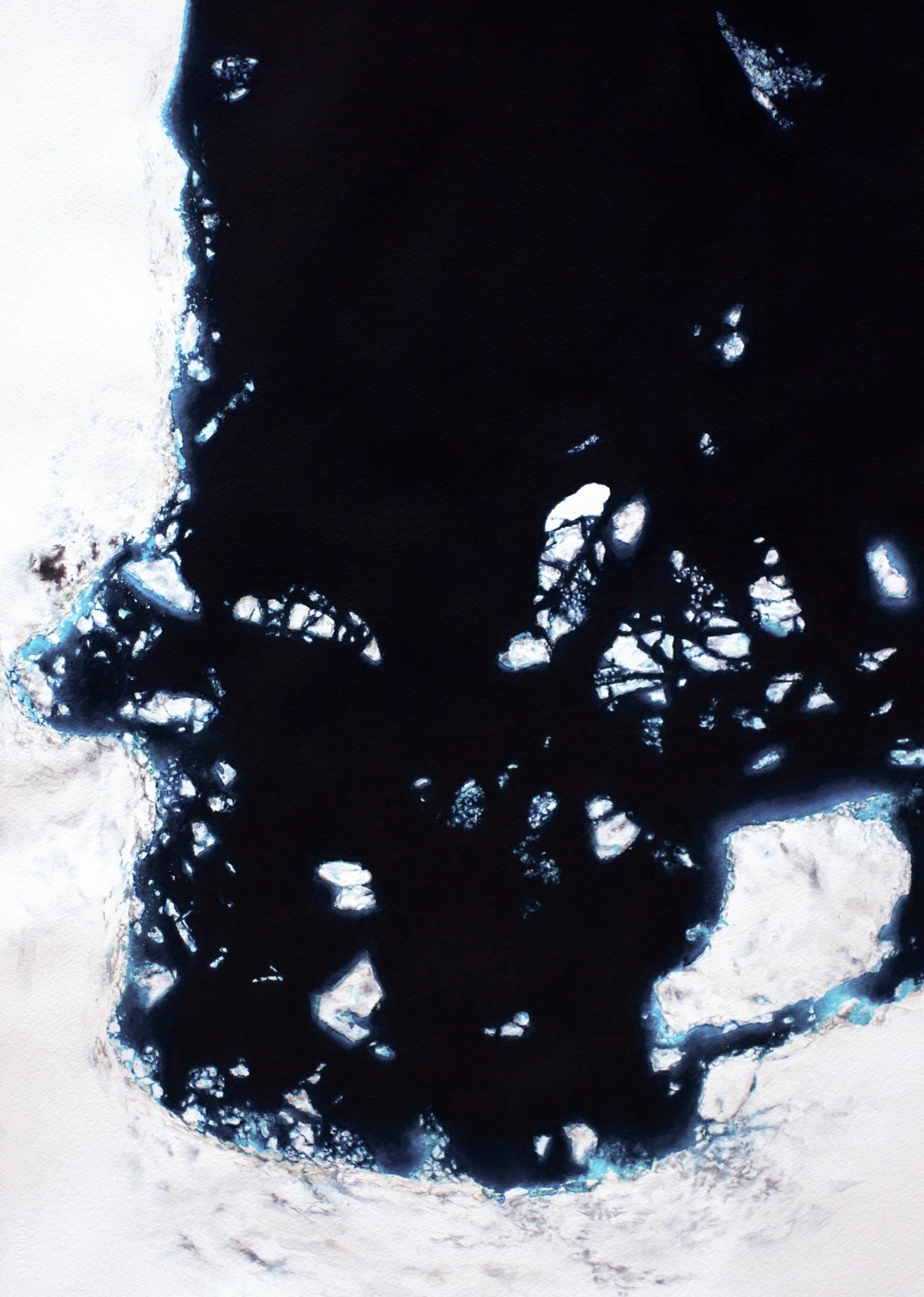 Coordenadas Antárticas IV  Acrílico / Papel, 70 x 50 cm, 2012   Antarctic Coordinates IV  Acrylic / Paper, 2' 3.5'' x 1' 7.7'', 2012