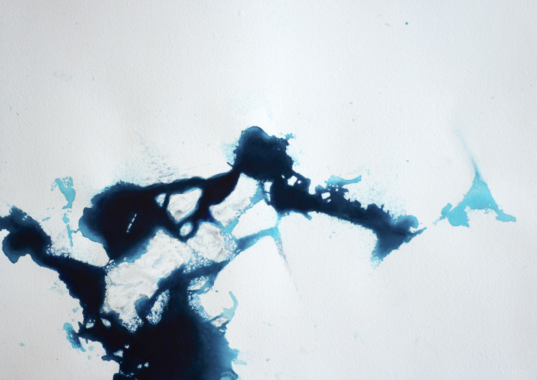 Coordenadas Antárticas VIII  Acrílico / Papel, 50 x 70 cm, 2012   Antarctic Coordinates VIII  Acrylic / Paper, 1' 7.7'' x 2' 3.5'', 2012