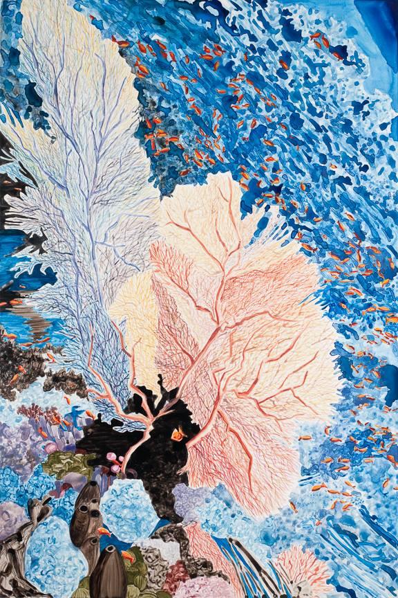 """Fan Coral   watercolor   36"""" x 24"""""""