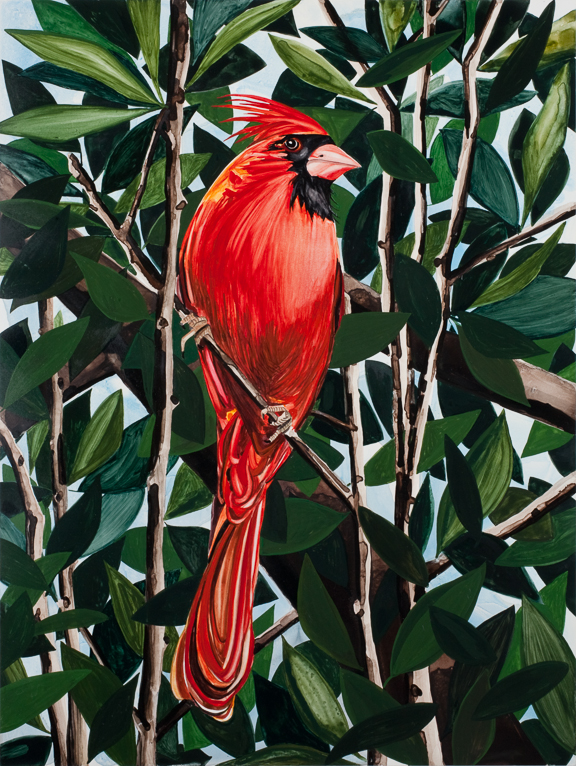 "The Cardinal  watercolor  24"" x 18""  ©Annika Connor"