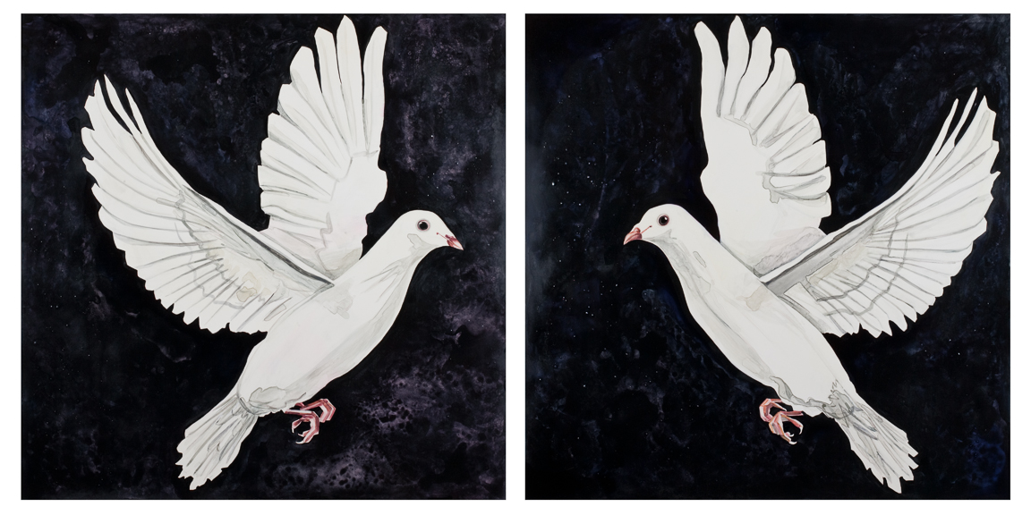 "Dove Diptych   watercolor on board   30"" x 60"" each panel, 30"" x 30"" each panel   ©Annika Connor"