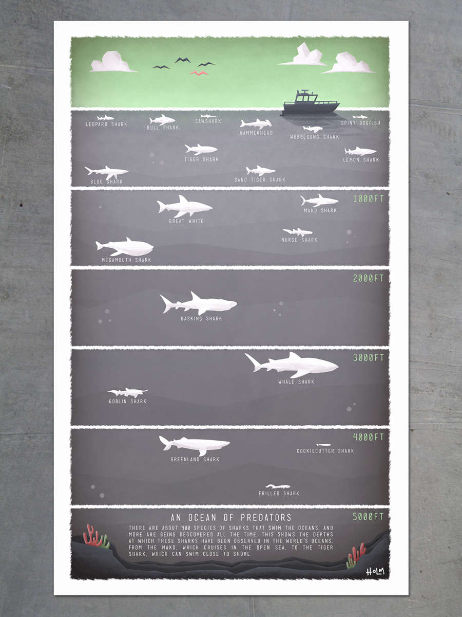 The depths at which different shark species are found.