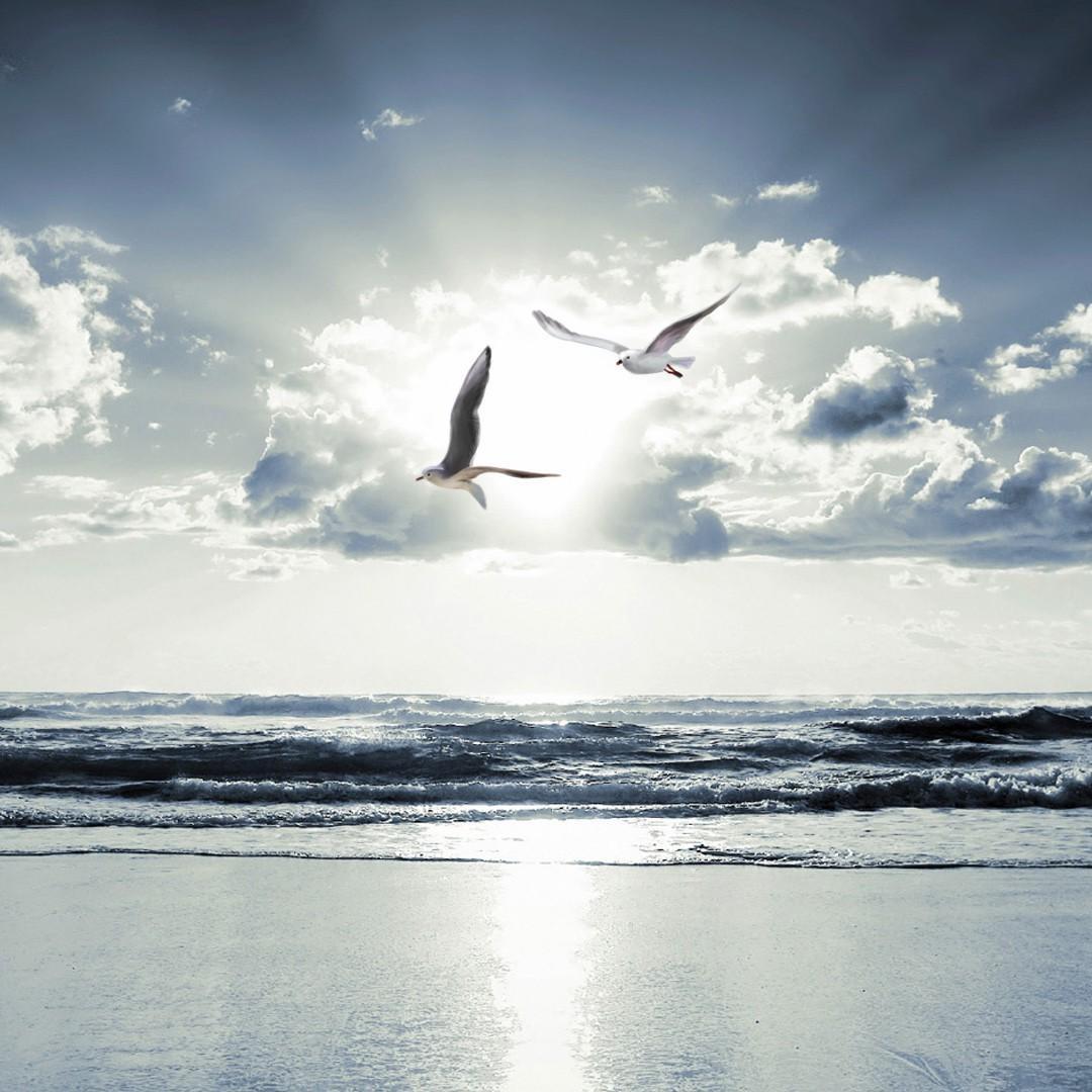 Hope is on the horizon regarding idiopathic illness