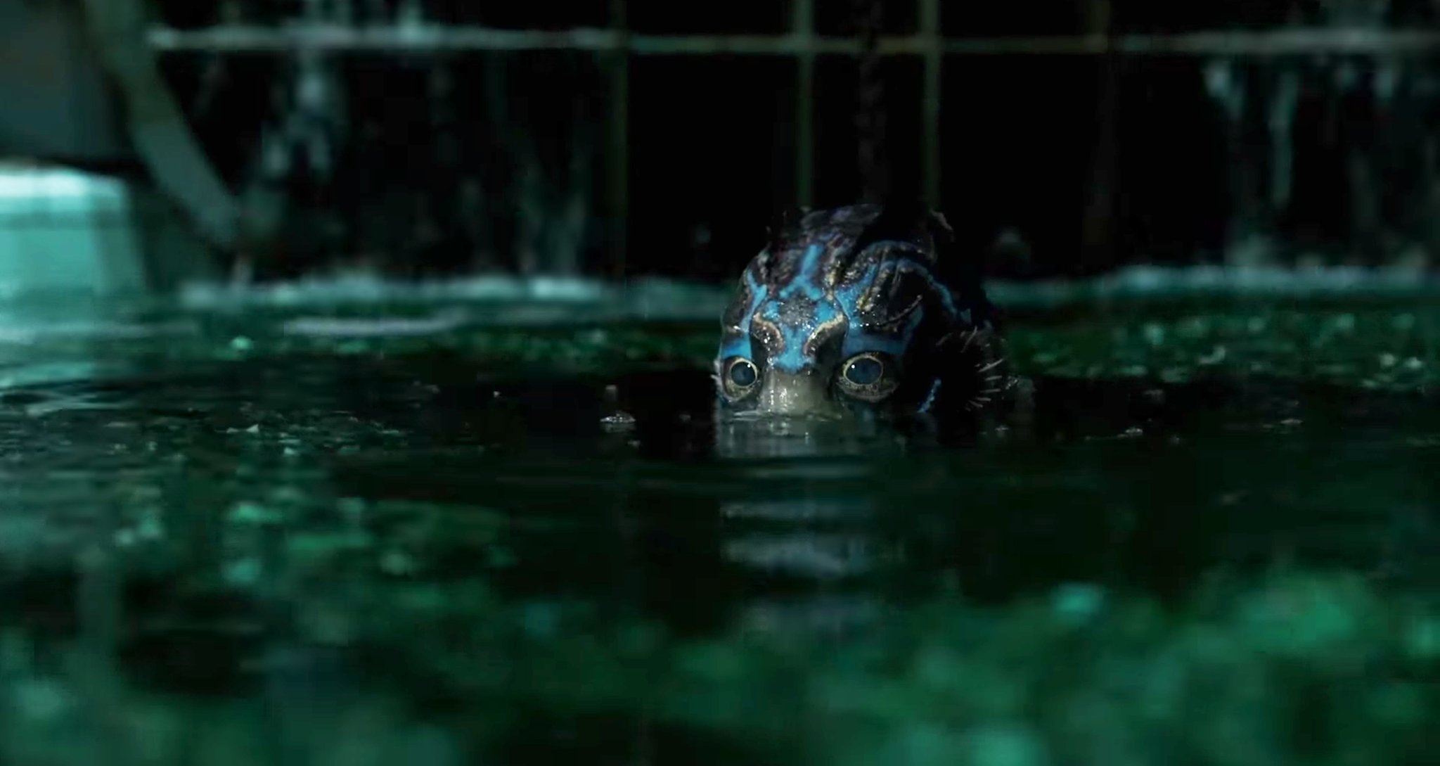 - The beautiful colors of The Shape of Water