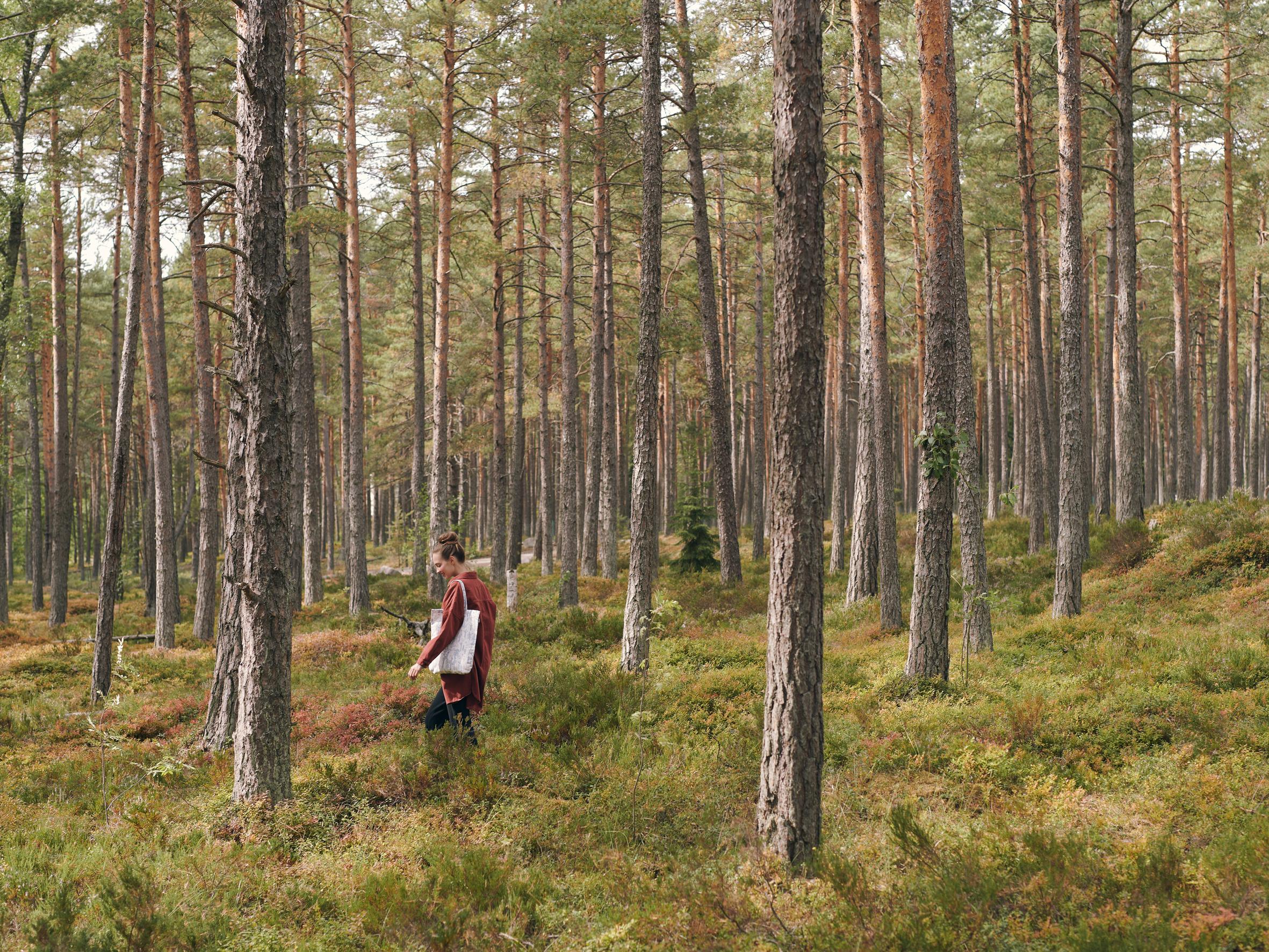 Woodlands Bag Blue