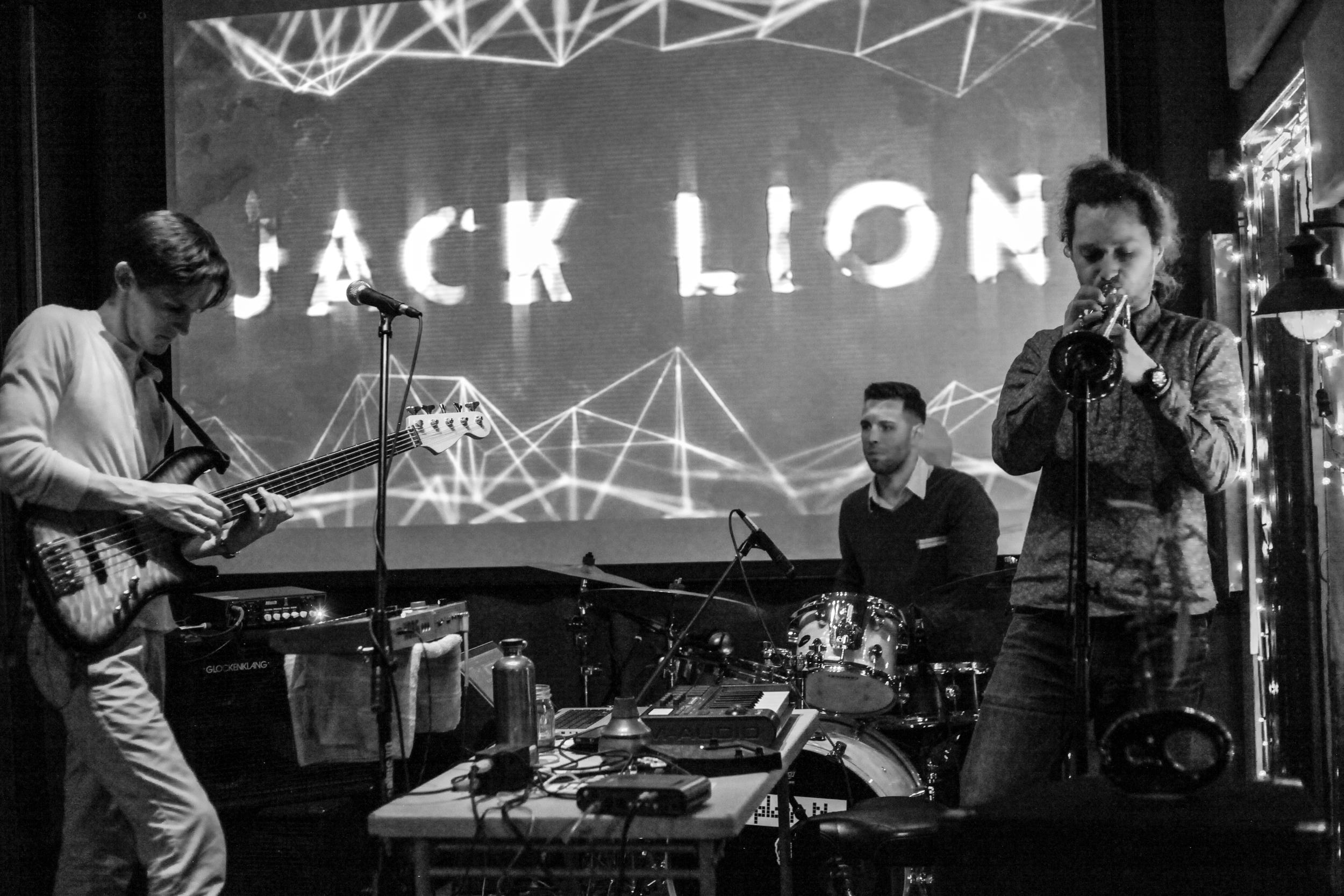 Jack Lion High Resolution