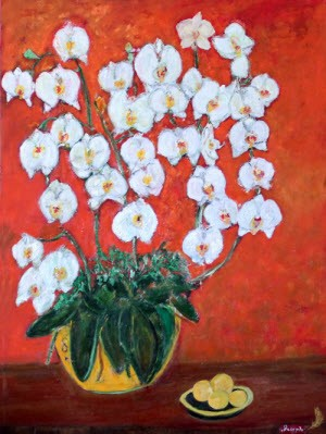 Phalaenopsis, by Dr. Daniel Joseph
