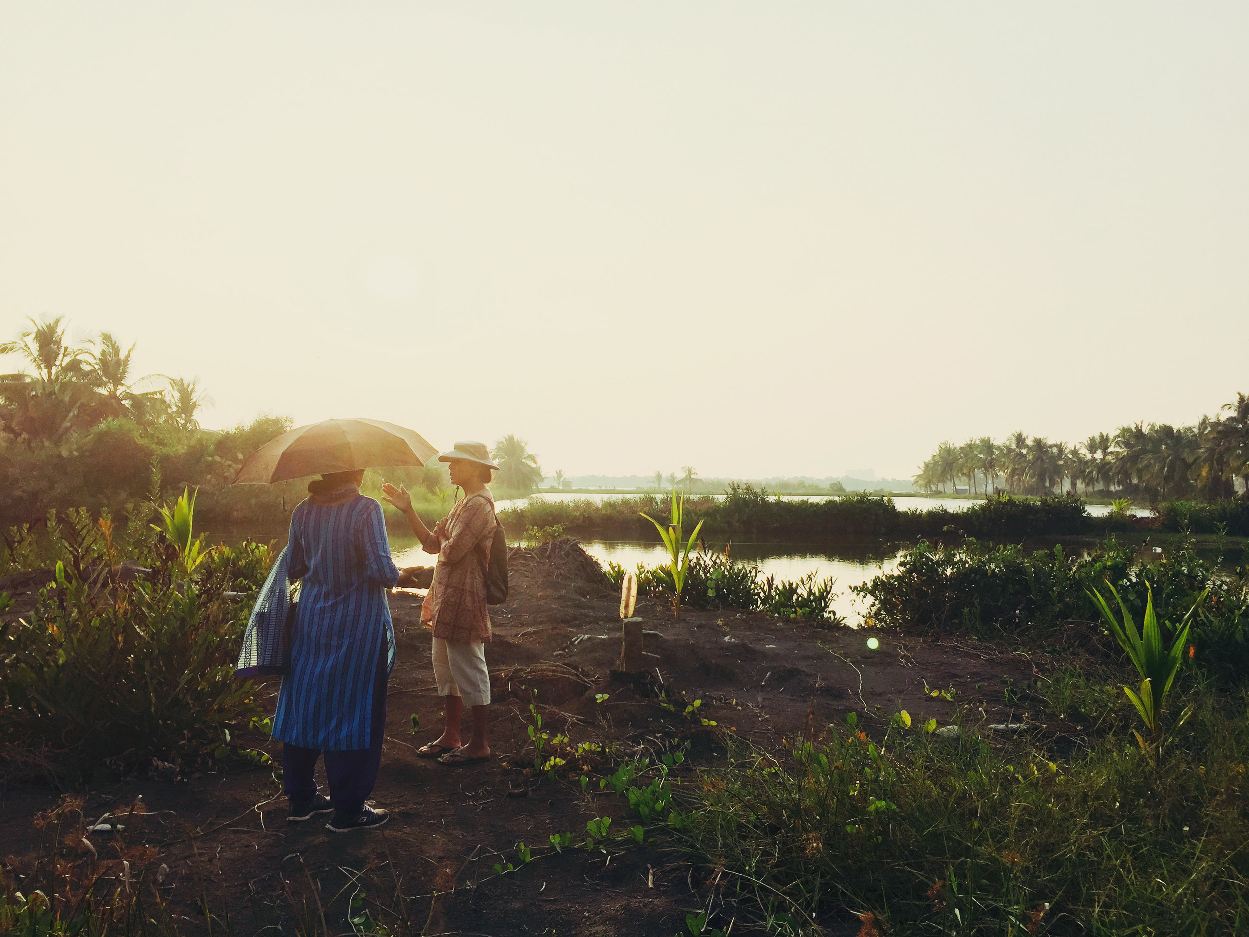 Anna Panangaden and Mary Mathew survey their marshland in Kerala, India.