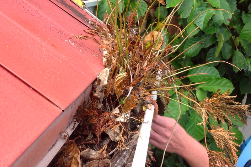 Gutter Gardens - Clever, but not the best idea. Easy to fix.
