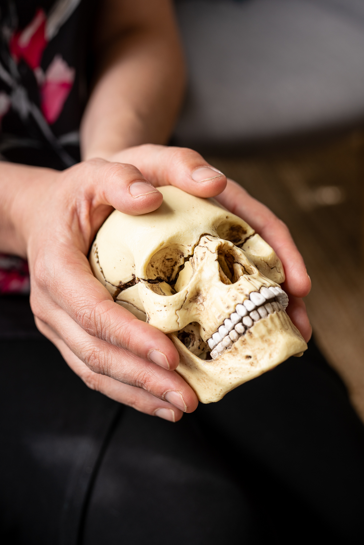 cranio-skull-7455.jpg