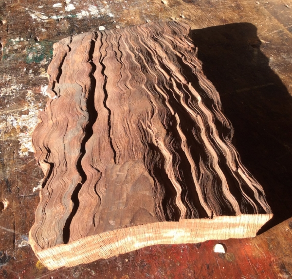 A fun project I am working on for myself is using this really old piece of Curly Redwood.