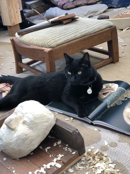 Max, the studio cat, sat right on top of the reference books and in the middle of everything.