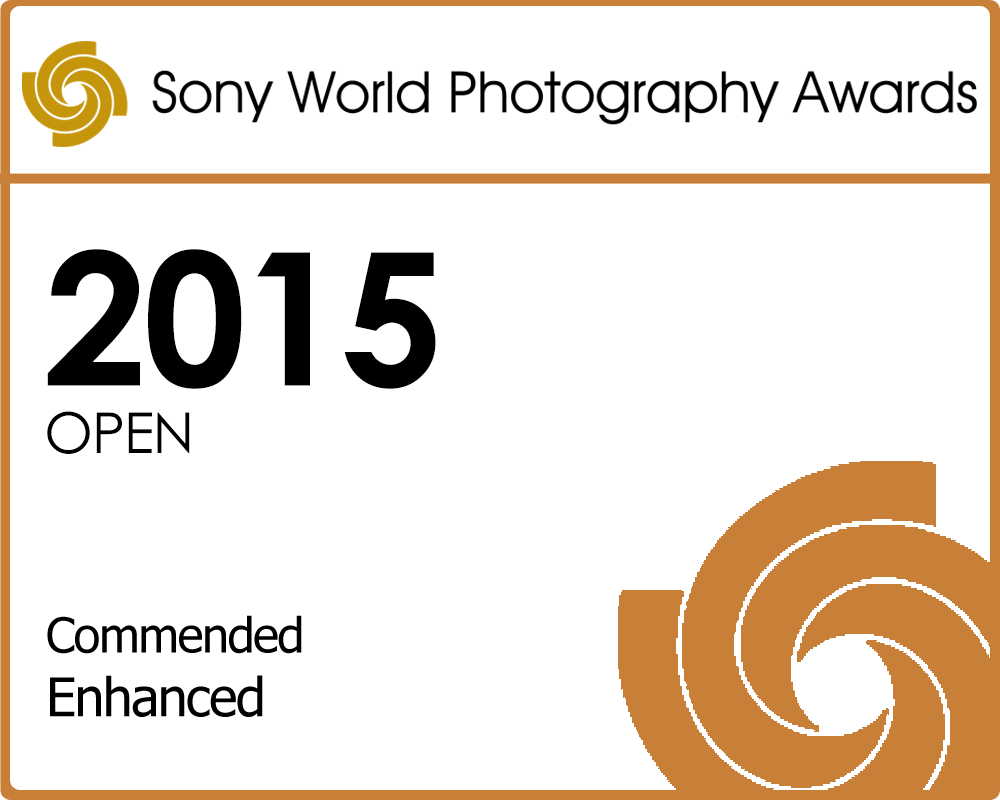 Sony World Photography Awards.png
