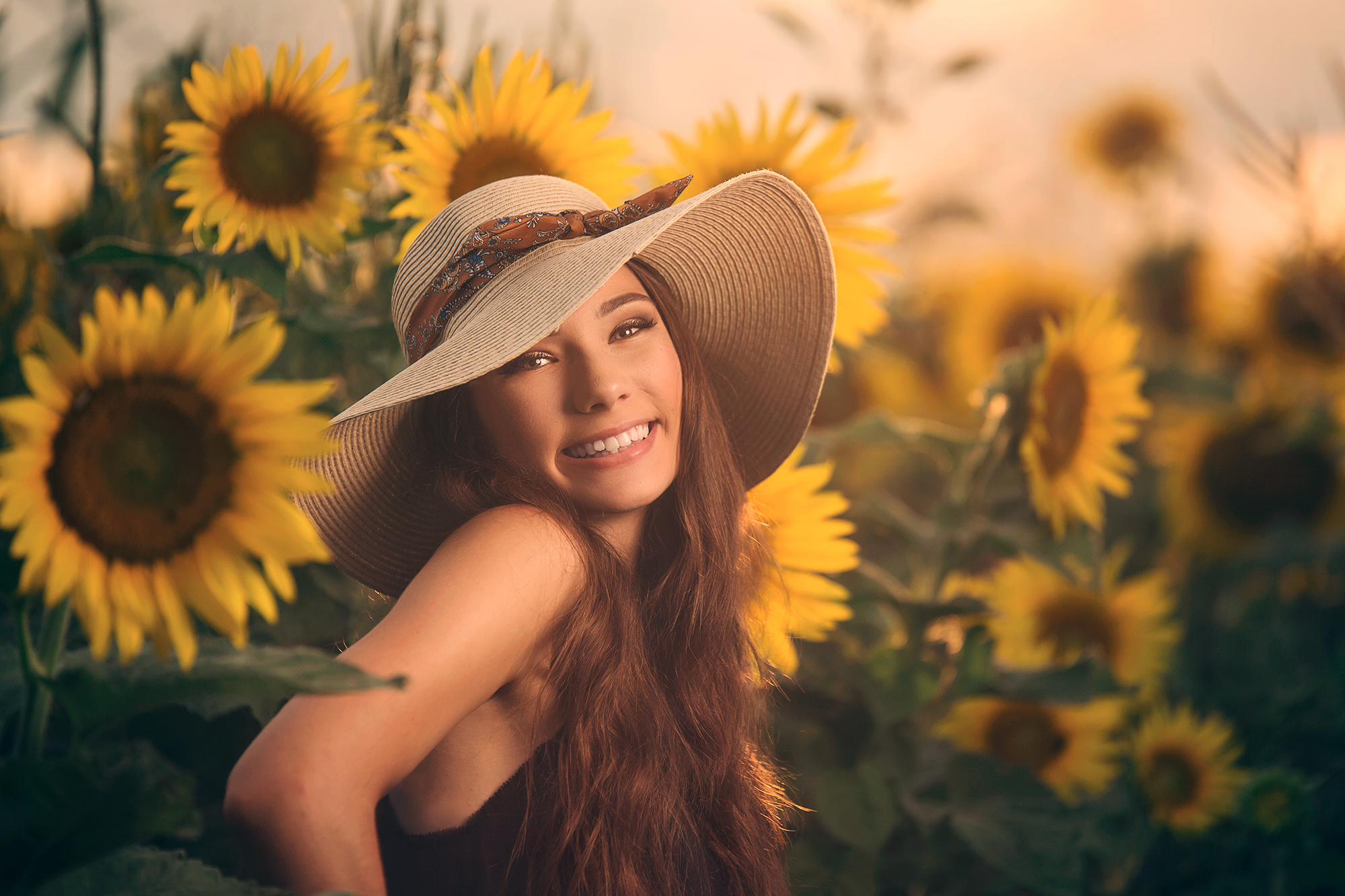 Sunflowers-6.jpg