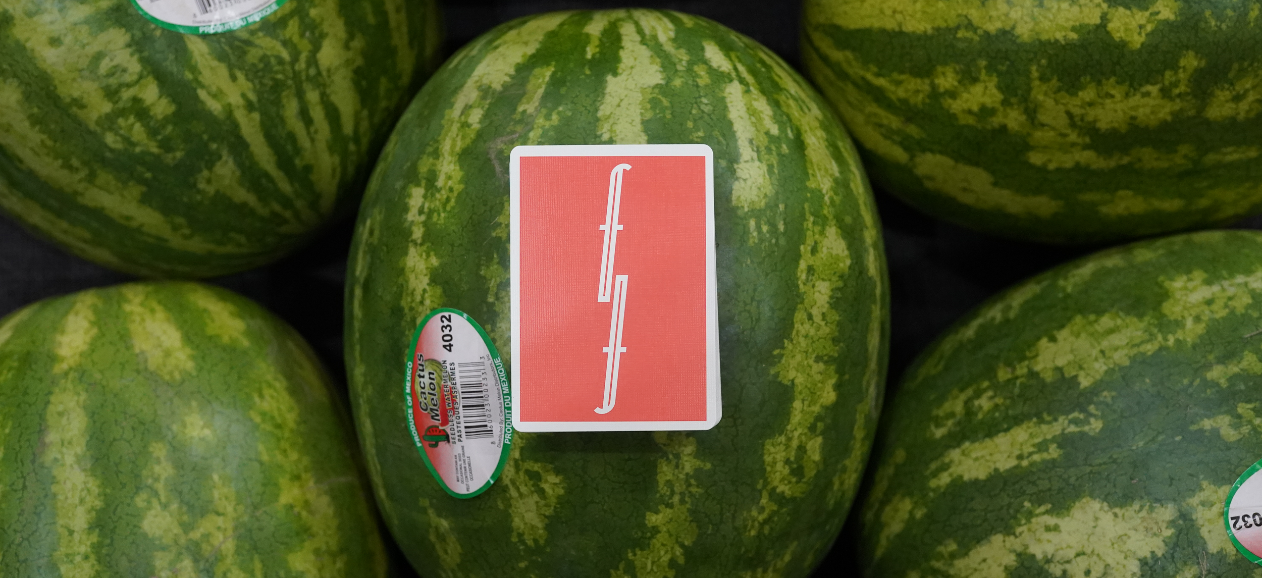 watermelontainewideshot_lighter_banner.png