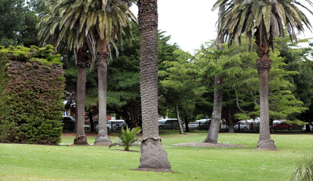 best-western-olde-maritime-hotel-accommodation-warrnambool-botanic-gardens.jpg