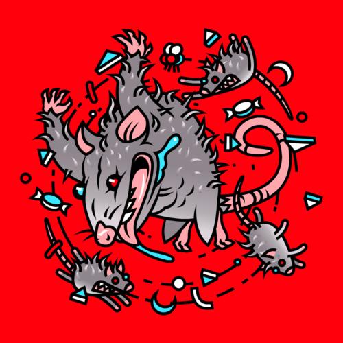 Opossum4.png