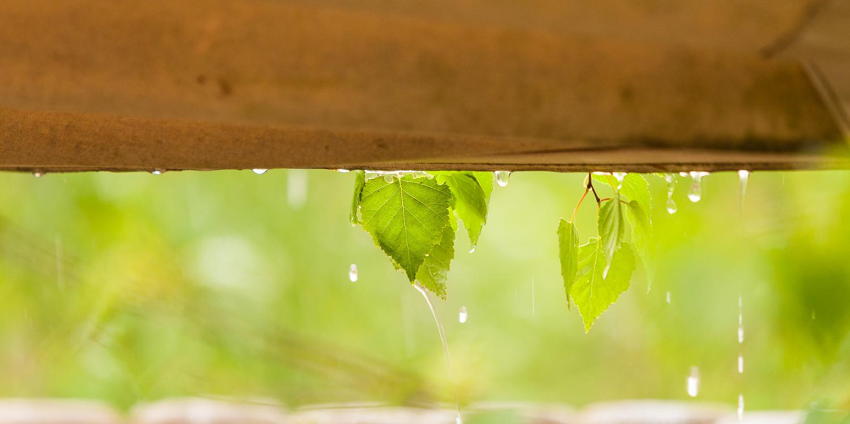 Regen tijdens de lunch..