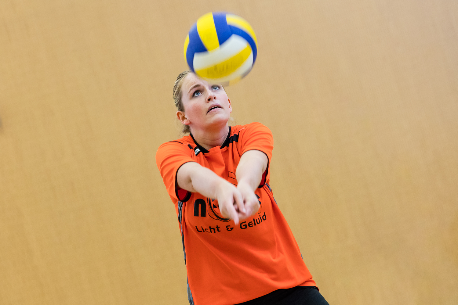 Volleybalvereniging Lierderholthuis