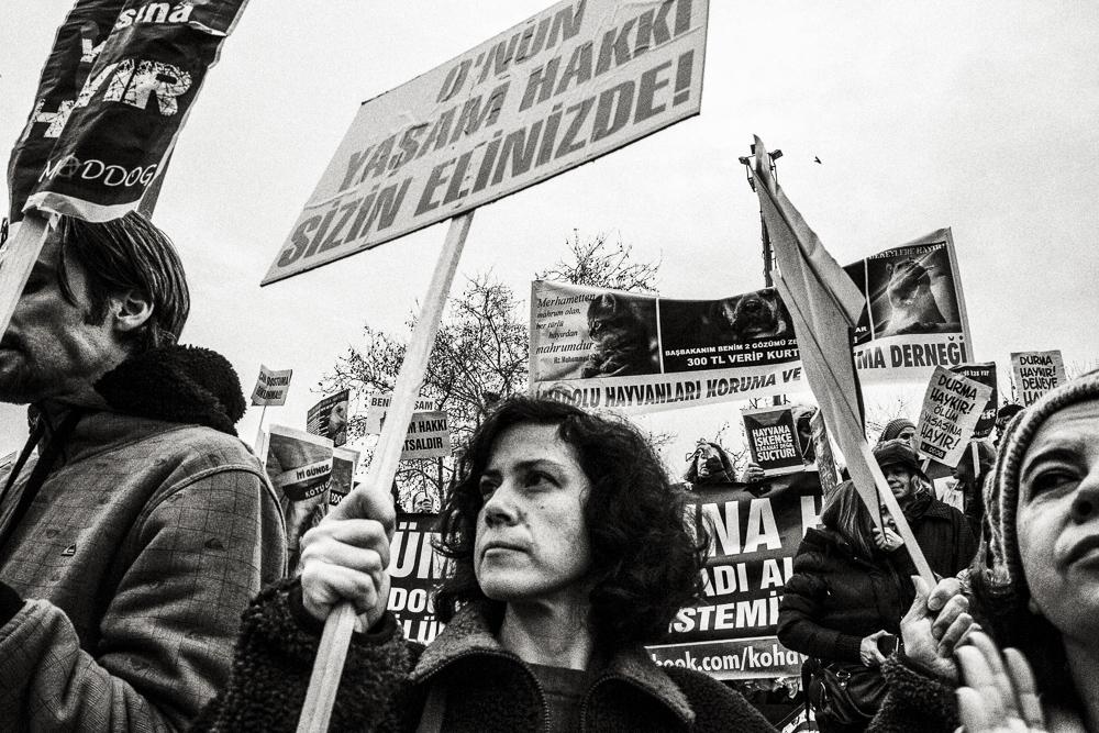 FM_istanbul_021.jpg