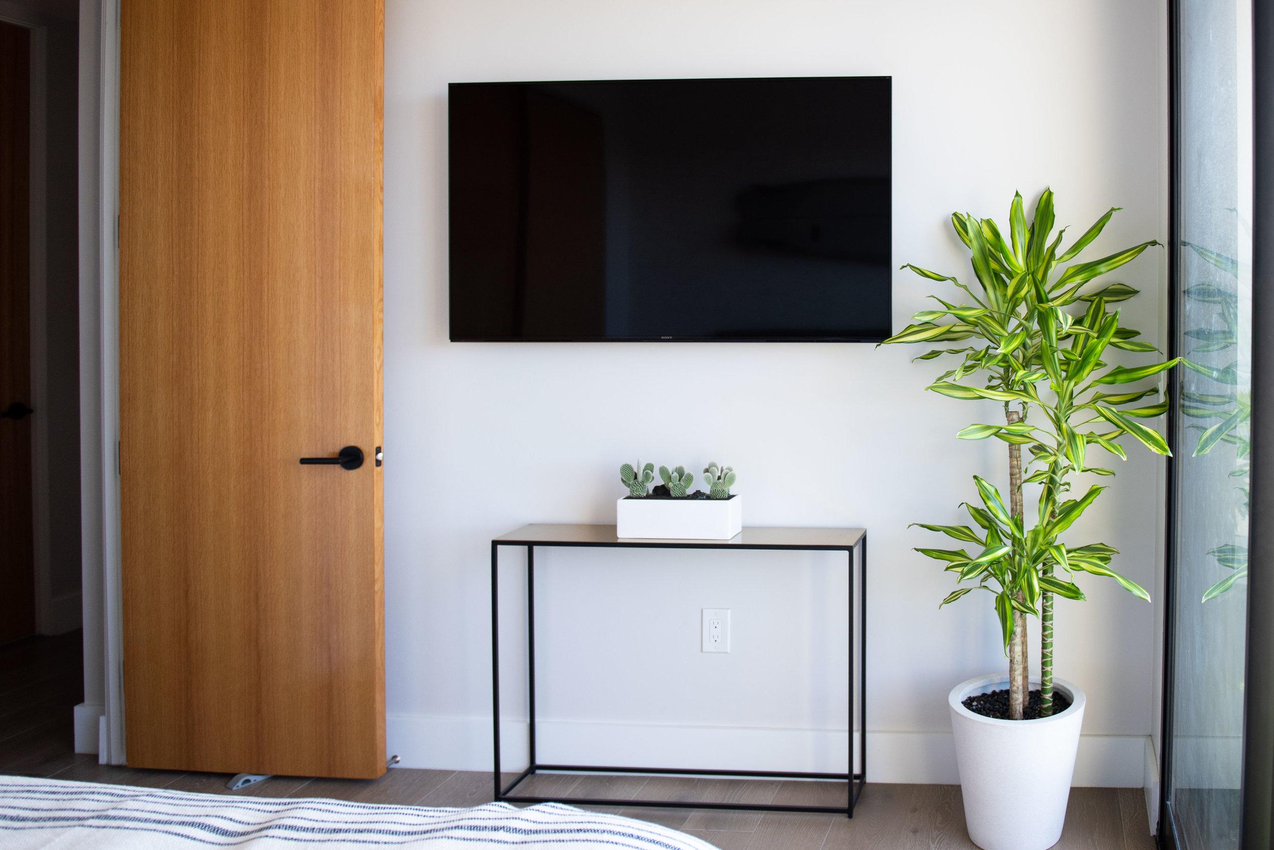 interior_plants-13.jpg