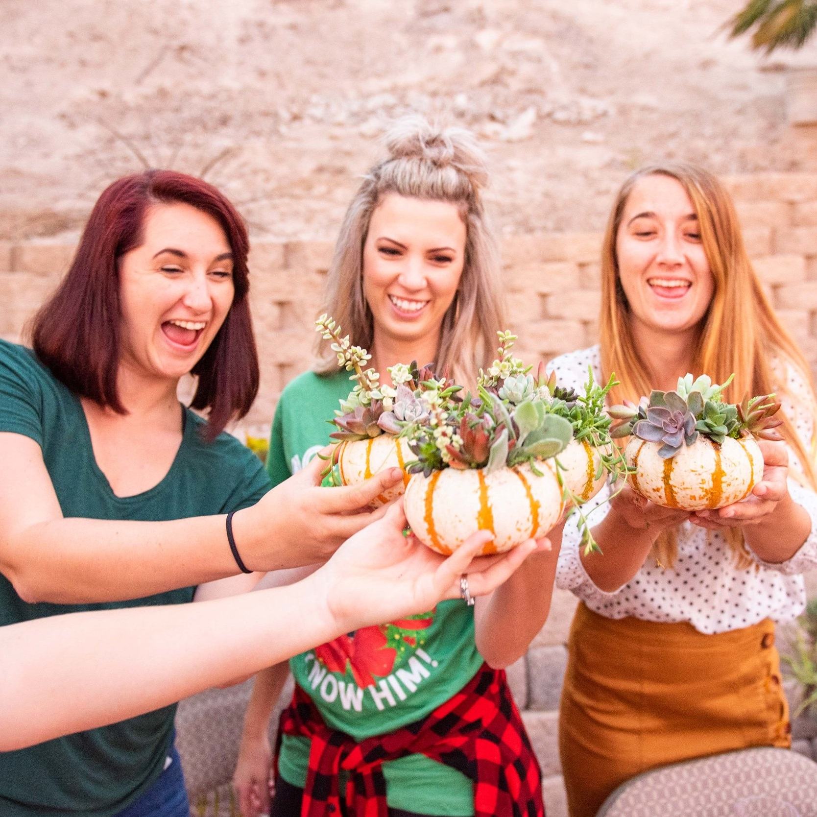 Pumpkin Plant Party! Carving Mini Pumpkins and planting succulents in them for a cute DIY holiday centerpiece.  Mobile Plant Parties By: The Potted Poppy, San Diego.