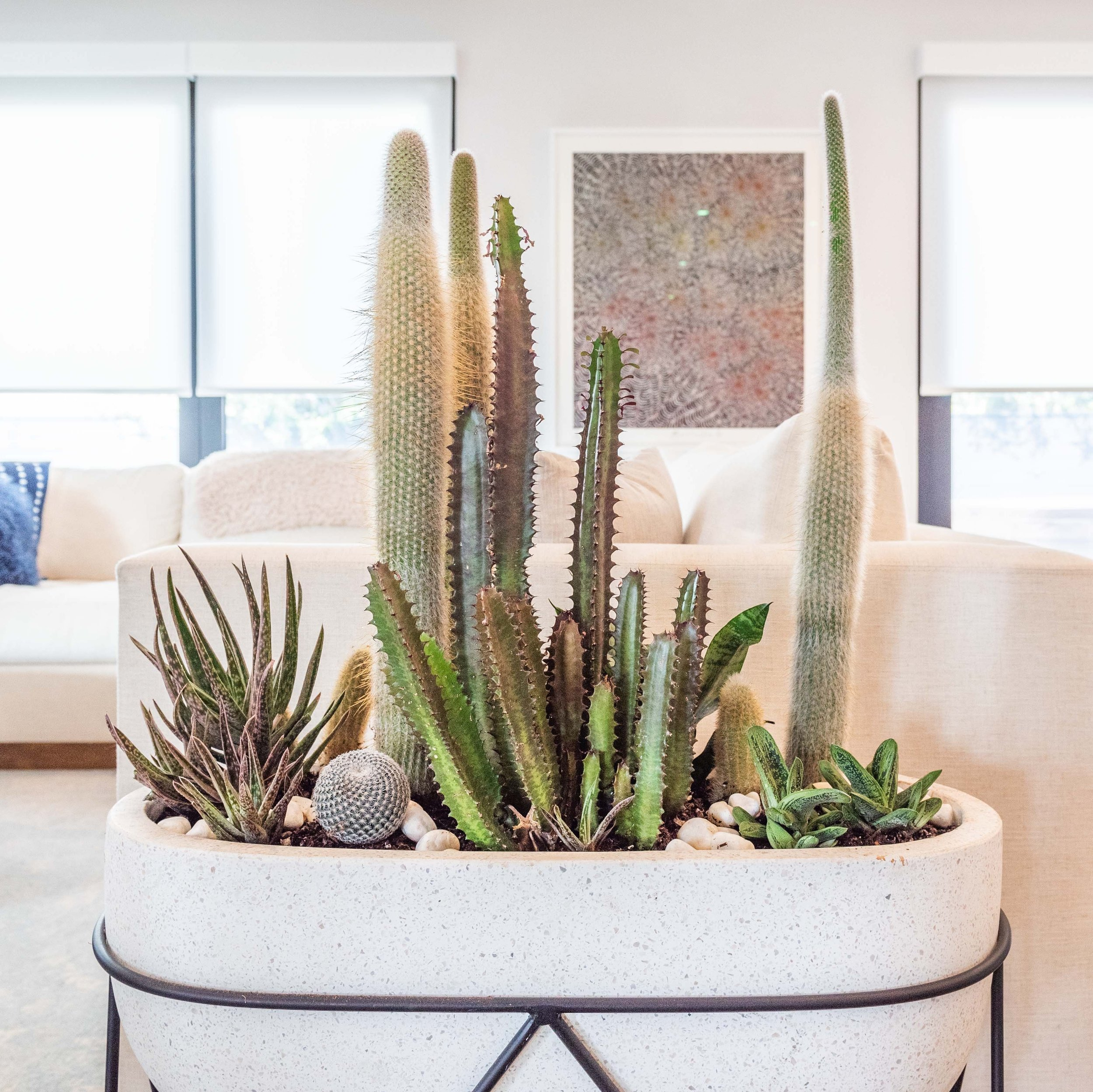 Interior Plant Design