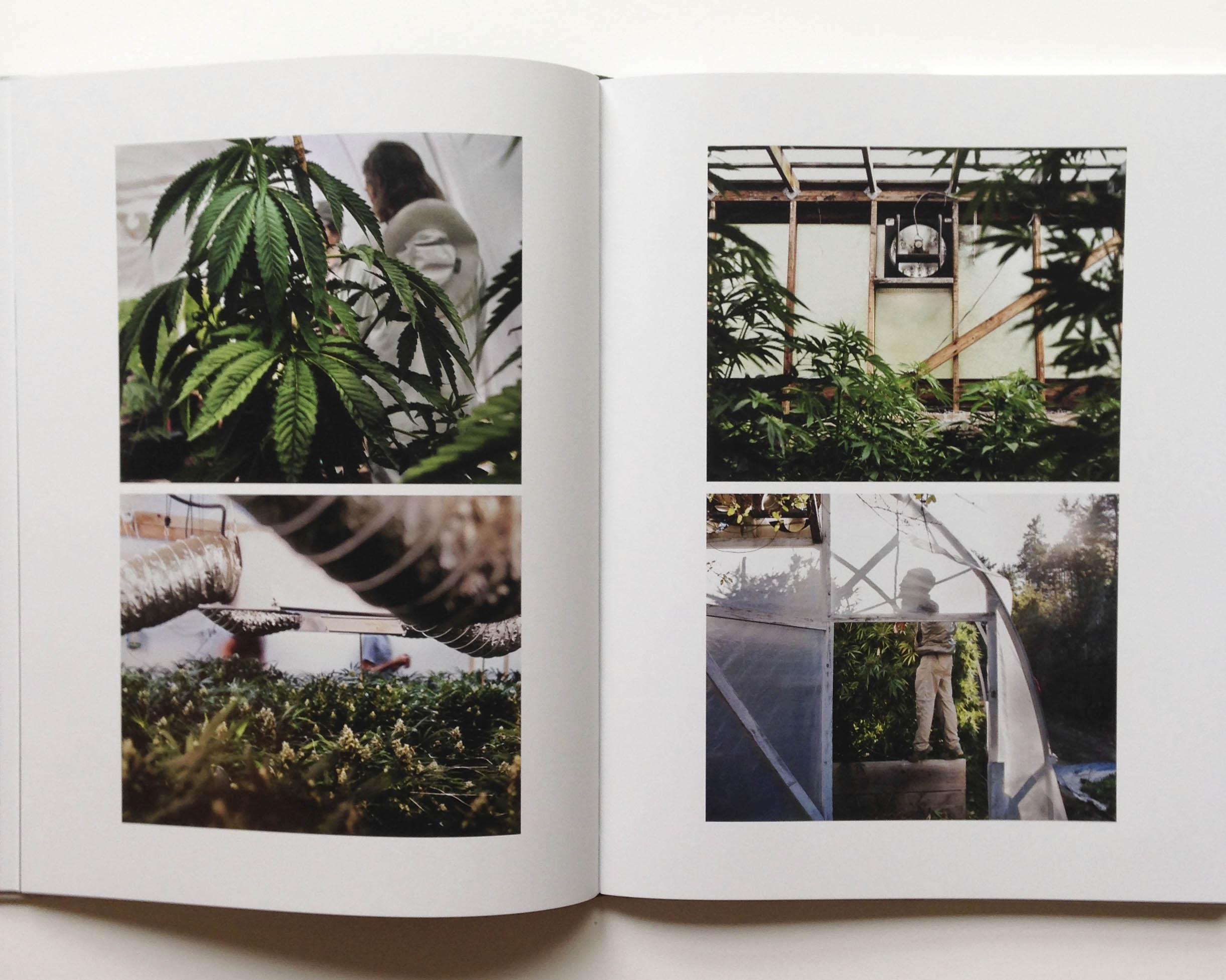 bookpage3.jpg