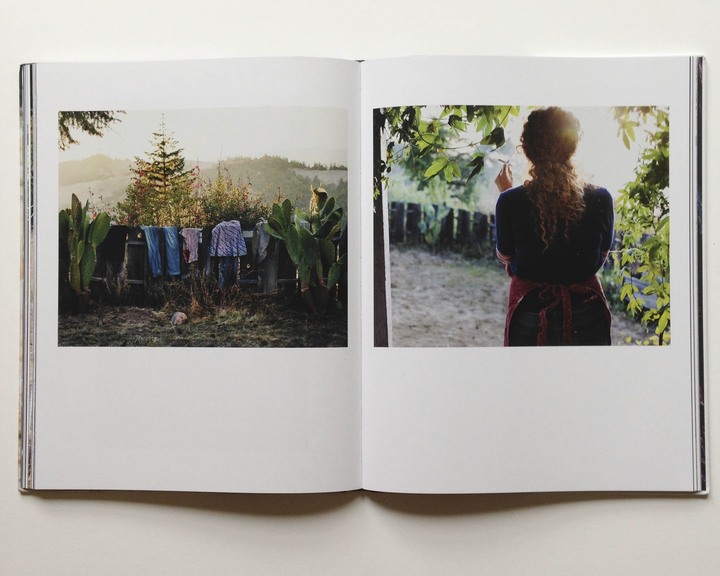 bookpage4.jpg